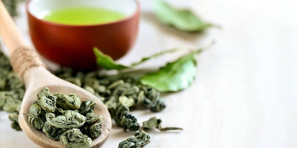 نگهداری از چای سبز