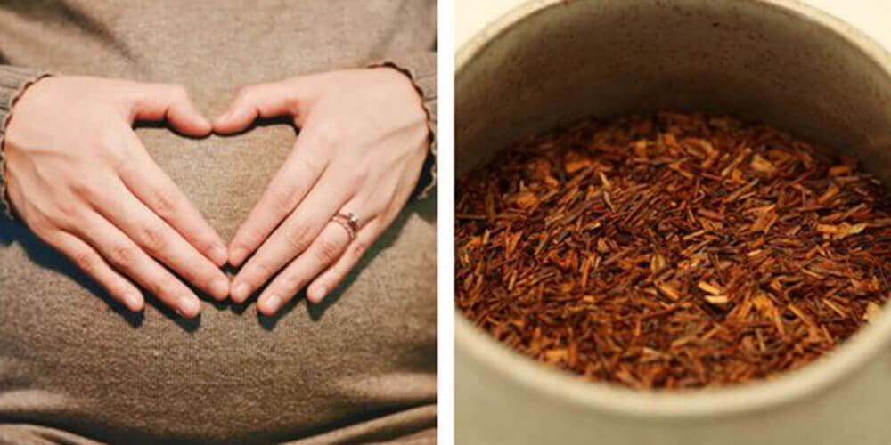 موارد احتیاط چای رویبوس